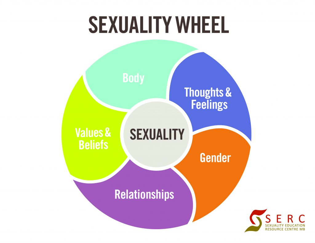 sexualitywheelcolourful